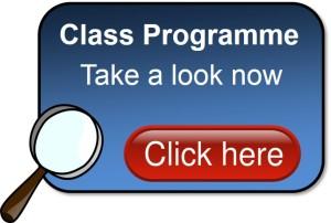 Programme of regular English lessons
