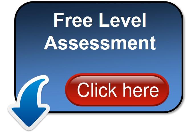 Free level Assessment